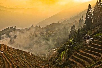 Het scharlakenrode zonsondergang. Mistig herfstlandschap met rijstterrassen. China, Yangshuo, Longsh van Michael Semenov