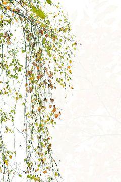 atmosphère d'automne. sur Francis Dost