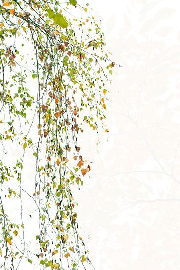 Herfstsfeer. van Francis Dost