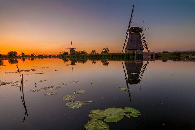 Mooi Kinderdijk van Marc Smits
