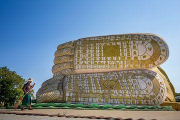 Die Füße des Buddha von Antwan Janssen