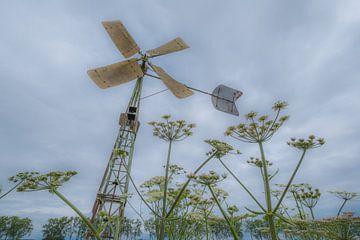 Windmühle von Moetwil en van Dijk - Fotografie