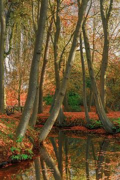 Herfst in Friesland 5.  Staniastate in Oentsjerk. van Marcel Kieffer