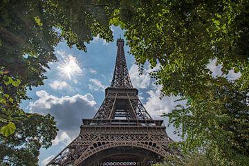 De Eiffeltoren in Parijs door de bomen van Mike Peek