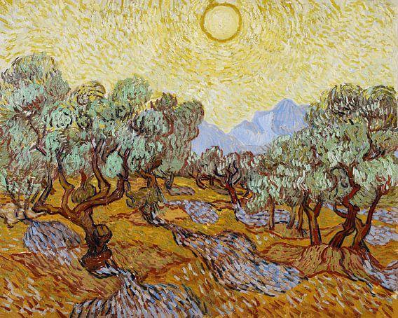Vincent van Gogh. Olijfbomen