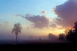 Zonsondergang in het veld van
