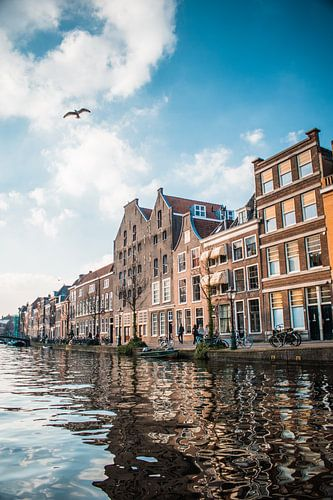 Along the canals von Iris Zoutendijk