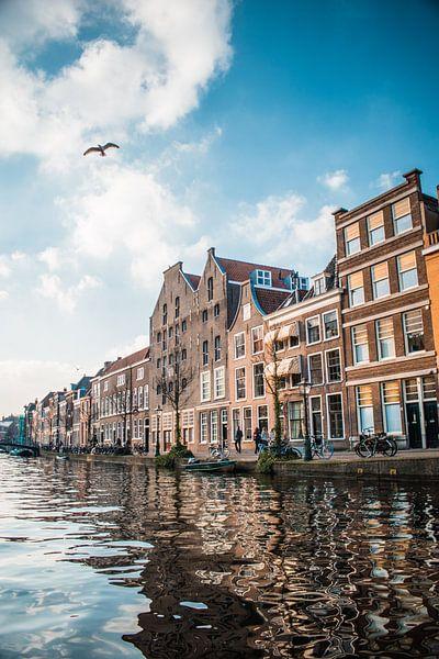 Langs het water van Iris Zoutendijk