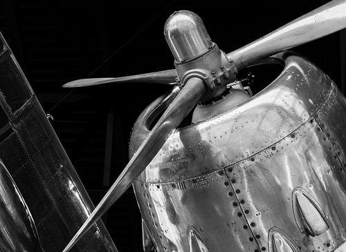 Wings of victory von Jacqueline Sinke