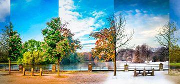 Jahreszeiten im Park von Jacco van der Zwan