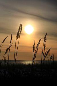 Romantische Ostsee