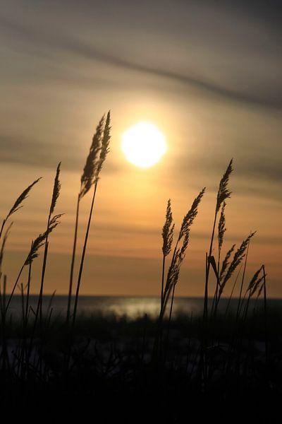 Romantische Ostsee von Thomas Jäger