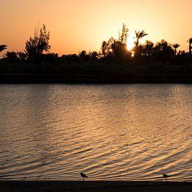 Sunrise in El Gouna, Egypt von Manon Visser