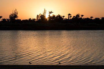 Zonsopgang in El Gouna, Egypte van Manon Visser