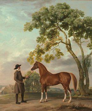 Lord Grosvenors Araberhengst mit Stallbursche, George Stubbs