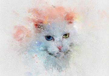 Die Katze von Claudia Evans