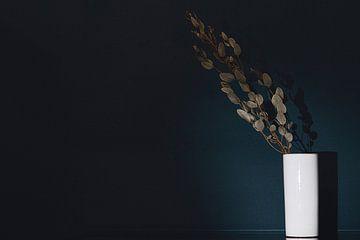 Stilleben mit Zweig von Eucalyptus Gunnii von Shottrotter
