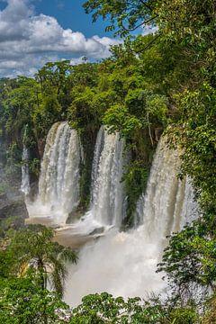 Adam und Eva Falls in Iguazu, Argentinien von Peter Leenen