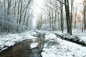 sneeuwlandschap van Joep Deumes