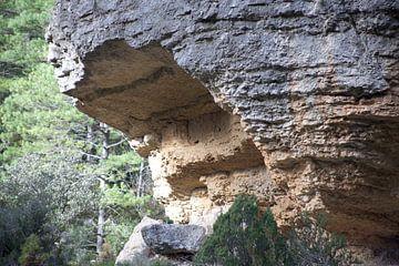 rotswand van marijke servaes