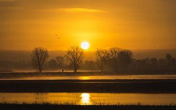 Zonsopkomst aan de Maas bij Overlangel von Jeffrey Van Zandbeek