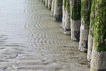Palen in het water aan het strand van Nicolette Vermeulen