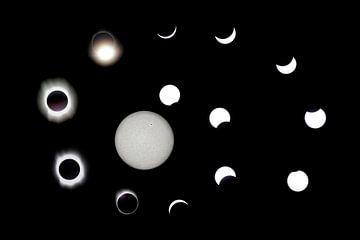 éclipse solaire sur Monarch C.