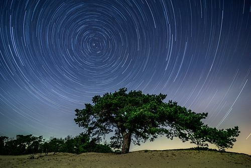 Star trail boven de Veluwe in de nacht