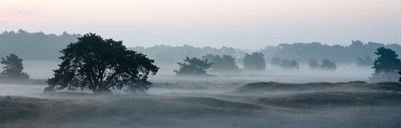 Mist over de Leuvenumse Bossen van Maurice Verschuur