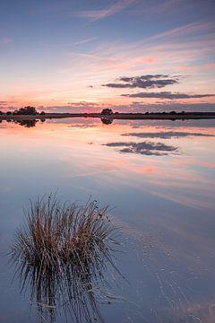 Strabrechtse Heide 198 van Deshamer