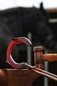 Farrier 10 sur Wybrich Warns