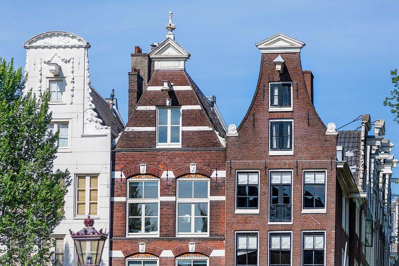 Typische Amsterdamse huizen aan de gracht van Jan van Dasler