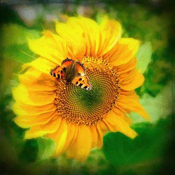 zonnebloem met vlinder van eric van der eijk