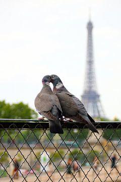 L'amour dans Paris sur Michaelangelo Pix