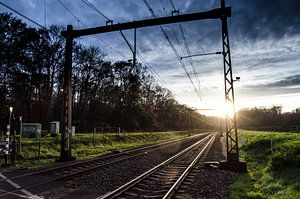 Low Sonne an der Strecke