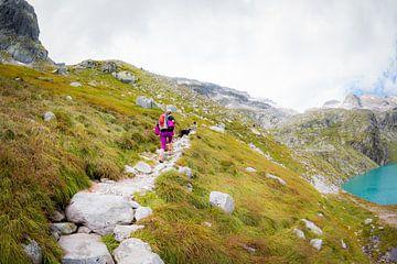 Bergwandern | Wandern in Österreich von Pieter Bezuijen