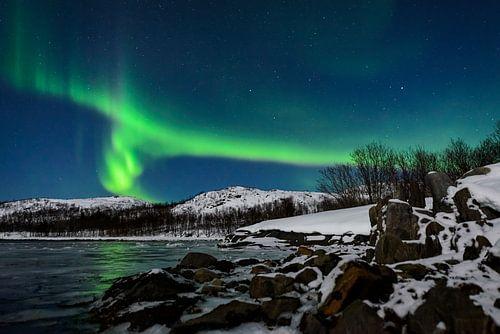 Noorderlicht of poollicht boven Senja in Noord Noorwegen van Sjoerd van der Wal