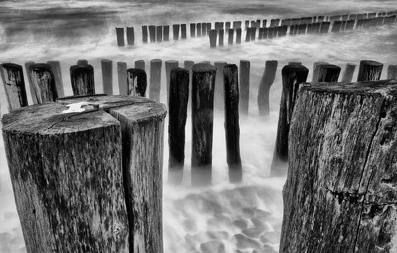Storm aan zee van Ellen Driesse