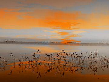Landschap Code oranje. van SydWyn Art