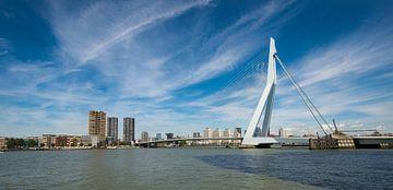 Erasmusbrug te Rotterdam van Brian Morgan