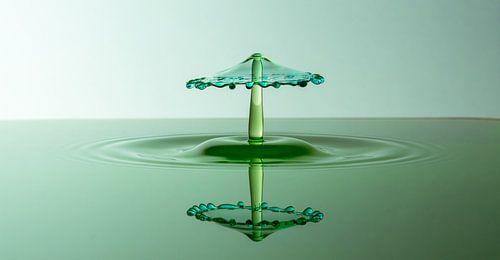 Splash Art Green Panorama