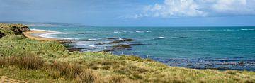 Panorama van een baai aan de Zuidkust, Nieuw Zeeland van Rietje Bulthuis