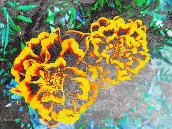 FlowerPower Fantasy 6