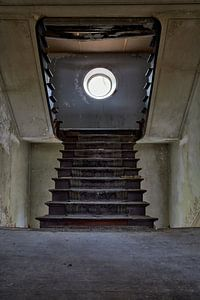 Which way's up van GVD Photography