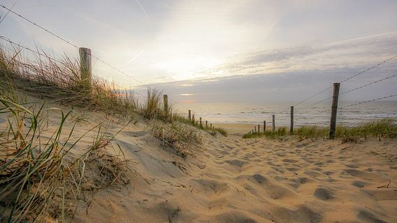 Strandleven van Dirk van Egmond