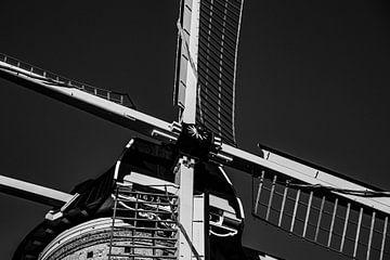 Delfter Mühle de Roos von Paul Schlüter