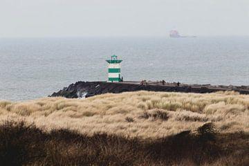Zuidelijk havenhoofd vanuit het Westduinpark van Anne Zwagers