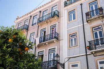Sinaasappels in Lissabon van Jalisa Oudenaarde