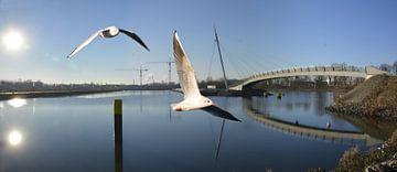 Hafenbecken Panorama van Edgar Schermaul