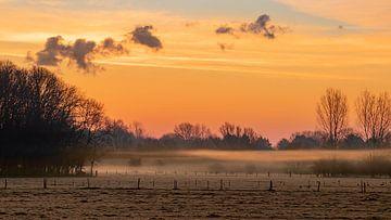 Adembenemend kleurenspel boven een nevelig veld voor zonsopkomst van Bas Ronteltap